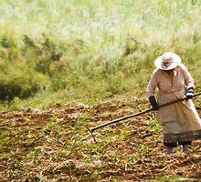 Back in Times - woman working in a cane field by Carole Anne Ferris