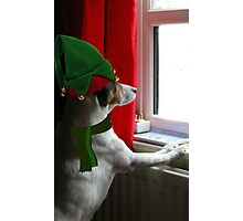 Santas Little Elfer Photographic Print
