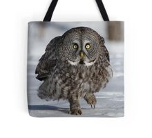 Maybe if I'm real quiet..... Tote Bag