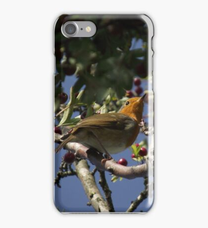 Rocking Robin iPhone Case/Skin