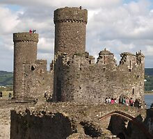Conway Castle - 8 by kalaryder