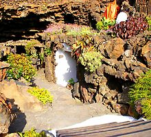 The Cave Flora Of Lanzarote by Fara