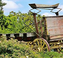 Old Time Wagon by Martha Sherman