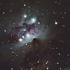 NGC 1977 - The Running Man Nebula by Barry Armstead