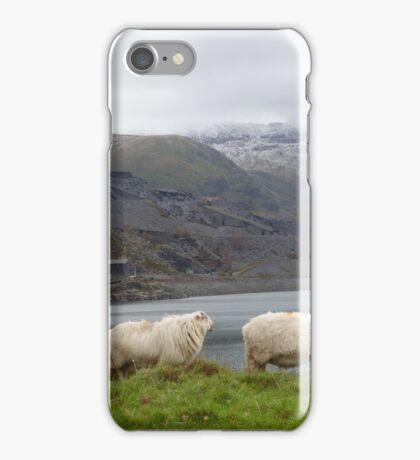 Serene world we live in iPhone Case/Skin