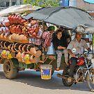 Travelling Salesman by Werner Padarin