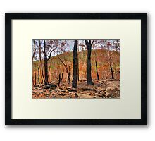 Bushfire Abstract - Mount Wilson and Mount Irvine NSW Australia - The HDR Experience Framed Print