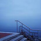 Lake Geneva..........France by Imi Koetz