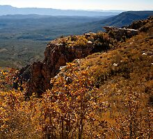 Mogollon Rim Country Autumn View by Lee Craig