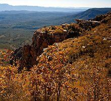 Mogollon Rim Country Autumn View by Lee Craig