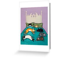 Bed Time with Cats Greeting Card