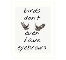 Birds Don't Even Have Eyebrows ft. Harry Styles' Swallow Tattoos Art Print