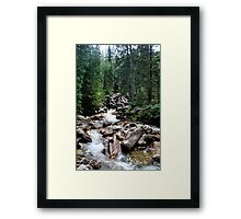 Base of Tanner Flats Framed Print