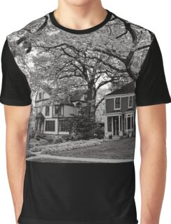 Side by Side, Oak Park Chicago Graphic T-Shirt