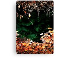 Fall leaves in HotSpring Canvas Print