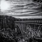 Landscape and architecture wall art black and white - The Bold Bridge by visionitaliane
