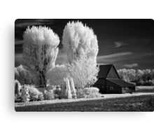 Black and white infrared print wall art - rural America barn and trees - The Color of Memories Canvas Print