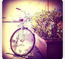Bicicletta, Portovenere by Colin Leal