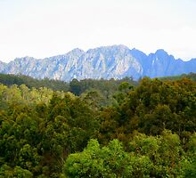 photography - mt roland, tasmania by kukkamoon
