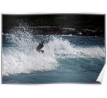 Surfing 5 Poster