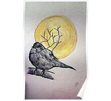 Little ol' bird Poster