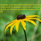 Jean 16:22 fr2 by hummingbirds