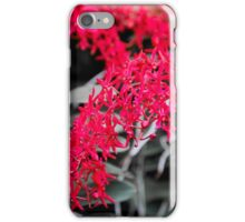 Red orchids iPhone Case/Skin