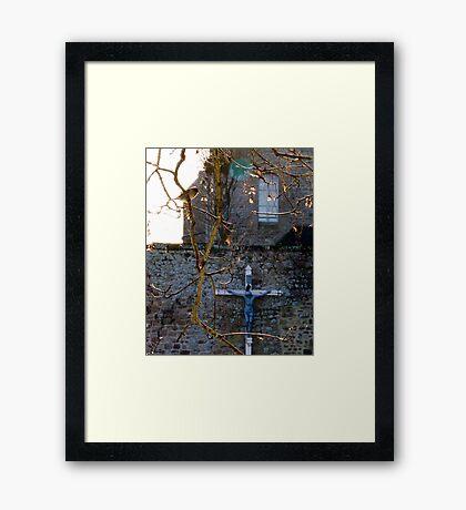 Birds Saint Michel Framed Print