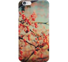 Remnants of Autumn iPhone Case/Skin