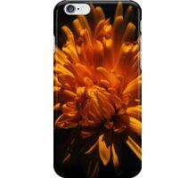 Autumn Flower iPhone Case/Skin