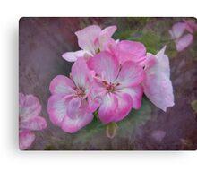 Pretty Blossoms Canvas Print