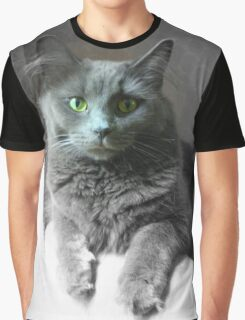Green Eyed Gray Cat Graphic T-Shirt
