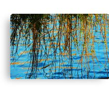 Weeping Willow reflected onto the water Canvas Print