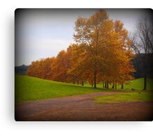 The park and trees in autumn Canvas Print