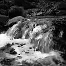 Water in Black and White by virginian