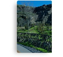 Two Forms of Beauty, Nature and Man Made Canvas Print