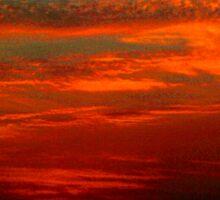 Dramatic red sunset Sticker