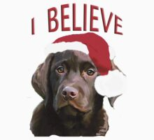 Chocolate Lab Believe T-Shirt
