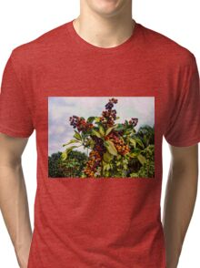 Ripening into the Maroon Nineteen Tri-blend T-Shirt
