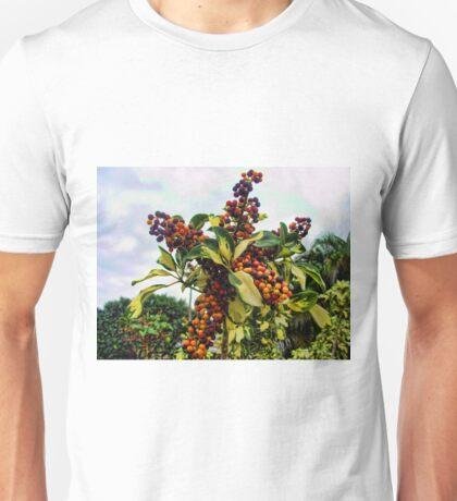Ripening into the Maroon Nineteen Unisex T-Shirt