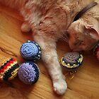 Gumbo by Catnip Balls by wee3beasties