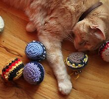 Gumbo by Catnip Balls by wee3beasties