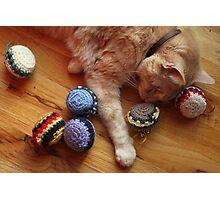 Gumbo by Catnip Balls Photographic Print
