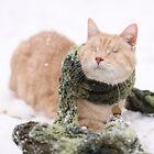 Gumbo in Snow by wee3beasties