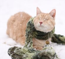 Gumbo in Snow by wee3beasties