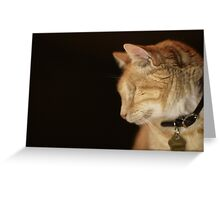 Gumbo Profile against Black Greeting Card