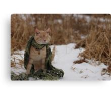 Gumbo Sitting in Snow Canvas Print