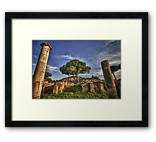 Ostia Antica overgrown ruins with nature and trees history of Italy fine art travel and color wall art - Ciò che rimane Framed Print