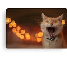 Wide-Mouthed Gumbo Canvas Print
