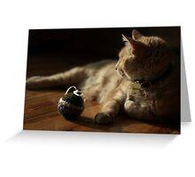 Gumbo by Catnip Ball Greeting Card